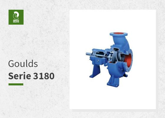 Goulds-Serie-3180